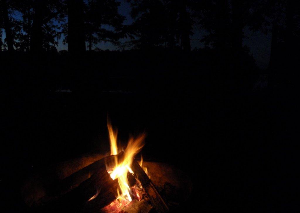 Kampvuur bij nacht in de bossen