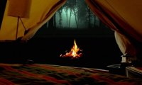 Camping in the forest at night